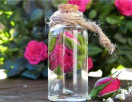 Аромат розы в женской парфюмерии