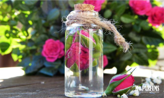 Аромат розы в парфюмерии для женщин